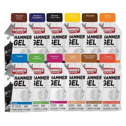 圖片 Hammer Nutrition Energy Gel 能量果膠
