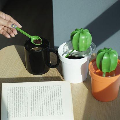 圖片 仙人掌咖啡罐